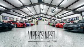 Viper's Nest