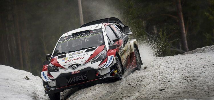 WRC 2019 - Rally Sweden Highlights