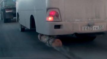Boomstam onder bus